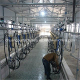 Cow Milking Machine Price for Dairy Farm