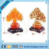 Polyresin Pachira for New Year Gift (HG079)