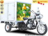 Enclosed Auto Vehicle Closed Bajaj Cargo Rickshaw with Box for Sale