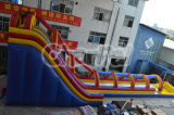 Giant Inflatable Water Slide N Slip Chsl277
