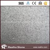 Durable Multi-Finishing Granite Floor Tile with High Guaranteed