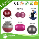 No1-4 Hot Sale SGS PVC Gym Exercise Yoga Ball with Color Box