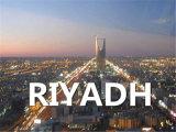 Qingdao to Riyadh Express by Ocean FCL