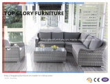 Garden Sectional Outdoor Wicker/Rattan Sofa Set (TG-049)