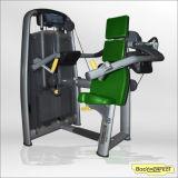 Fitness Equipment Professional Club Delt Machine Bft-2018/Body Building Equipment Fitness Club Shoulder Tainer Machine Strength Machine