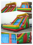 Inflatable Slide for Backyard Birthday Party