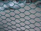 Wire hexagonal Mesh avec 18-27 Gauge Wire