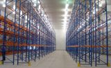 Large Scale Cold Room Project for Fruit, Vegetable, Meat, Fish