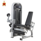 Seated Leg Extension Fitness, Gym and Gym Equipment, Body Building