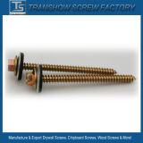 Hot Sale Hex Washer Head Self Tapping Screws