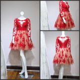 Long Sleeves Homecoming Party Formal Gown A-Line Lace Evening Dress E14715