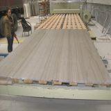 White Marble for Tile/Slab/Flooring/Wall/Countertop/Worktop/Vanity Top