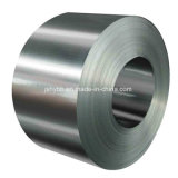 Good Price Dx51d Hot Dipped Galvanized Coil
