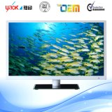 Smart LED LCD TV 55inches