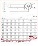 Tainless Steel SS304 SS316 Eye Bolt DIN444 M8
