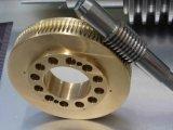 Superior Quality Worm Gear by CNC Machining