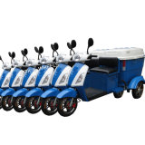 Cargo Type 500W/800W Electric Mobility Scooter (CT-023)