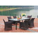 Garden Rattan Furniture Patio Wicker Dining Set (DS-06022)