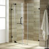 New View Frameless Shower Door for Shower Room