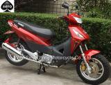 Biz-4 Nice Design Hot Sell 110cc Cub Motorcycle