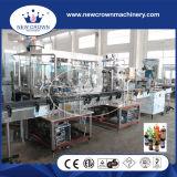 Balanced Pressure Carbonated Drink Bottling Machine (DG-12)