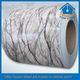 New Grain Hot Dipped Prepainted Galvanized Steel Coils PPGI PPGL