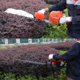 22.5cc Professional Hedge Trimmer with Ce GS Certification