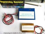 Super Small Regenerator for 200ah Acid-Lead Battery