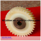 High Quality Power Transmission Parts of Nylon Spur Gear