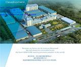 China Detergent Powder Factory
