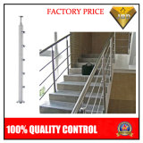 Stainless Steel Stair Handrail with Bar for Stair or Balcony (JBD-B002)