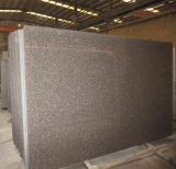 G664 Bainbrook Brown Granite Slab for Countertops