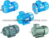 Y Series Three Phase AC Electric Motors with CE Approved (Y132M-4)