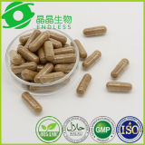 Dong Chong Xia Cao Capsules Wholesale Bodybuilding Supplements
