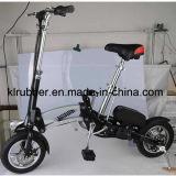 Lightweight Folding Electric Bike with Internal Lithium Battery