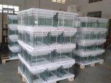 Small Curved Glass Aquarium for Home Decoration