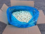 Frozen Garlic to Korea with High Quality