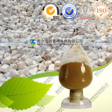 Natural Tuckahoe Extract with 10%-50% Polysaccharides