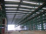 Steel Structure Workshop/Warehouse (SSW-183)