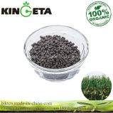 Kingeta Carbon Based Organic Fertilizer Contain Pyroligneous Acid