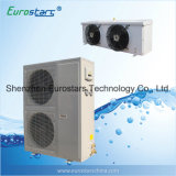 Cold Storage Machine with Copeland Compressor Condensing Unit (ESPA-08NBTG)