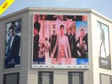 P8 Outdoor Full Color LED Display (256X128mm)