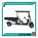 Electric Utility Golf Cart, 2 Seats with Rear Long Cargo Box