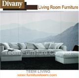 Divany Series Livingroom Furniture Teem Sofa