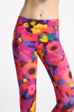 Floral Printed Fitness Mesh Leggings for Women
