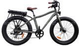 250W Fat Tire Mountain Electric Bike
