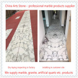 China Bianco Arabascata White Marble Tiles for Floor and Column