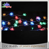 Waterproof Color Changed String Light for Tree Decoration and Protection