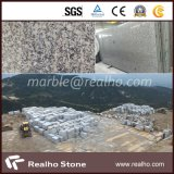 Own Quarry G602 Grey Granite with SGS Certificated (RHCA-012)