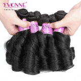 Fashion Spring Curly 100% Remy Funmi Human Hair Weaving